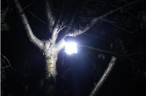 Đèn led đa năng tại Hà nội, HCM